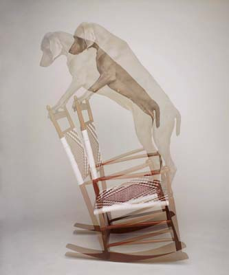 William Wegman, Weimaraner 19 - Galerie Stephen Hoffman - Muenchen