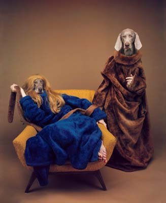 William Wegman, Weimaraner 25 - Galerie Stephen Hoffman - Muenchen