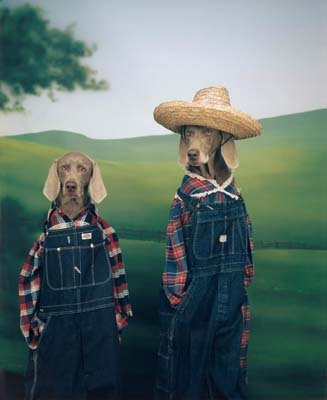 William Wegman, Weimaraner 30 - Galerie Stephen Hoffman - Muenchen