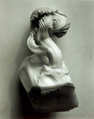 EW_Cabbage_Fragment_1931
