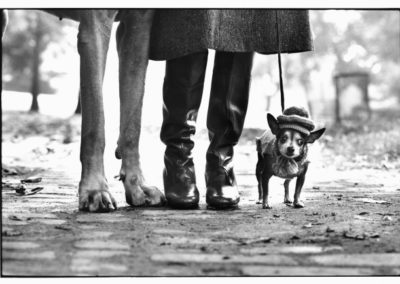 "Elliott Erwitt, Felix, Gladis and Rover, New York City, 1974, From ""Personal Exposures."" © Elliott Erwitt / Magnum Photos"