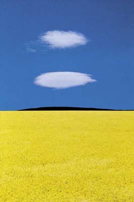 Franco Fontana, Landscape 12