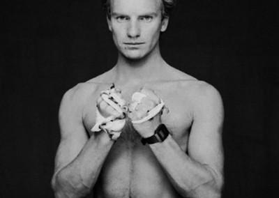 Terry O'Neill , Sting (1983) - Galerie Stephen Hoffman, Munich