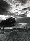 Carl Mydans, Landscape, Wales 1953