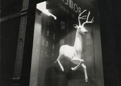 Abbott__Designer__s_Window
