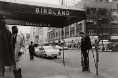 GSH-Portfolio-Claxton-Birdland