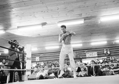 Michael Brennan, Shadow boxing 2