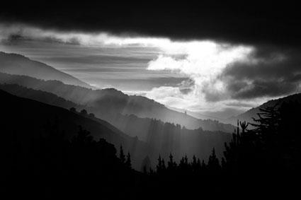 Cara Weston, Early morning light, GSH