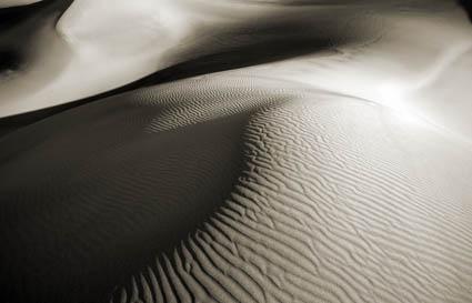 Cara Weston, dune early morning