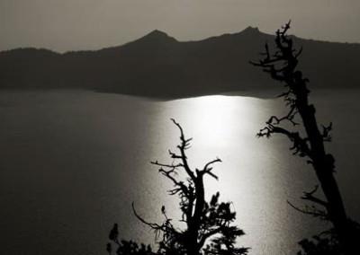Cara Weston, Two trees sunset