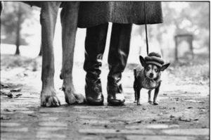 Elliott Erwitt, Felix, Gladys and Rover, Elliott Erwitt/Magnum Photo