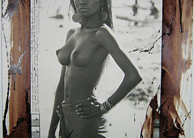 Peter Beard, Fayel - Platinum print with gelatin silver collage, found objects, and blood / GSH