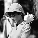 Terry O'Neill, Audrey Hepburn mit Taube - Galerie Stephen Hoffman - Munich