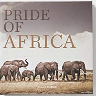Buch: Klaus Tiedge, Pride of africa