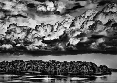 """Sebastião Salgado, 145. Paraná zwischen Rio Negro und Cuyuni. Die Paranás sind gleichsam """"Seen"""", die mit den großen Flüssen durch Kanäle oder Furos verbunden sind. Bundesstaat Amazonas, 2019, Galerie Stephen Hoffman-Muenchen"""